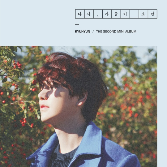 kyuhyun - 2nd mini album
