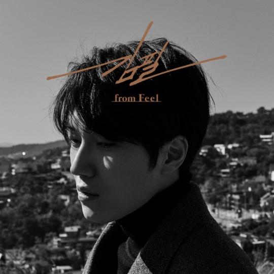 kim-feel-from-feel